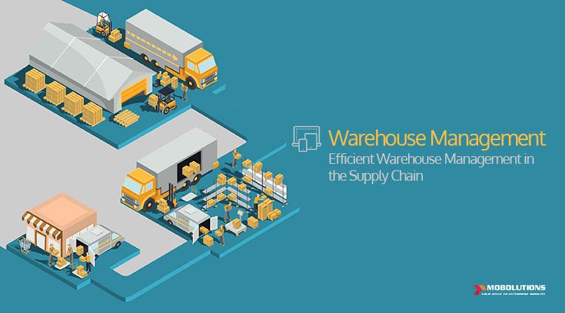 Understanding Efficient Warehouse Management in the Supply Chain and SAP Warehouse Management Functions