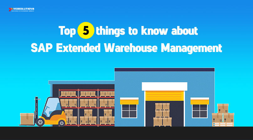 Top 5 things you need to know about SAP Extended Warehouse Management (SAP EWM)